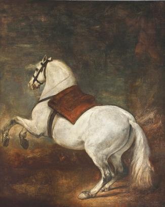 Le cheval blanc - 1650 -  Palacio Real (Patrimonio Nacional) - Madrid